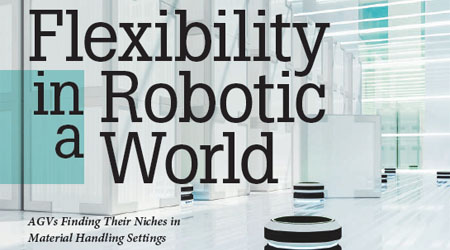 Flexibility in a Robotic World